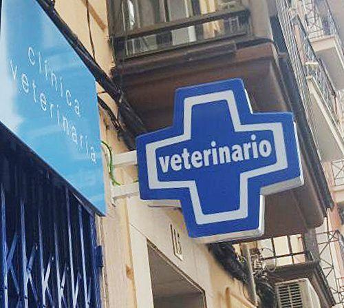 Cruz de Malta para clínicas Veterinarias