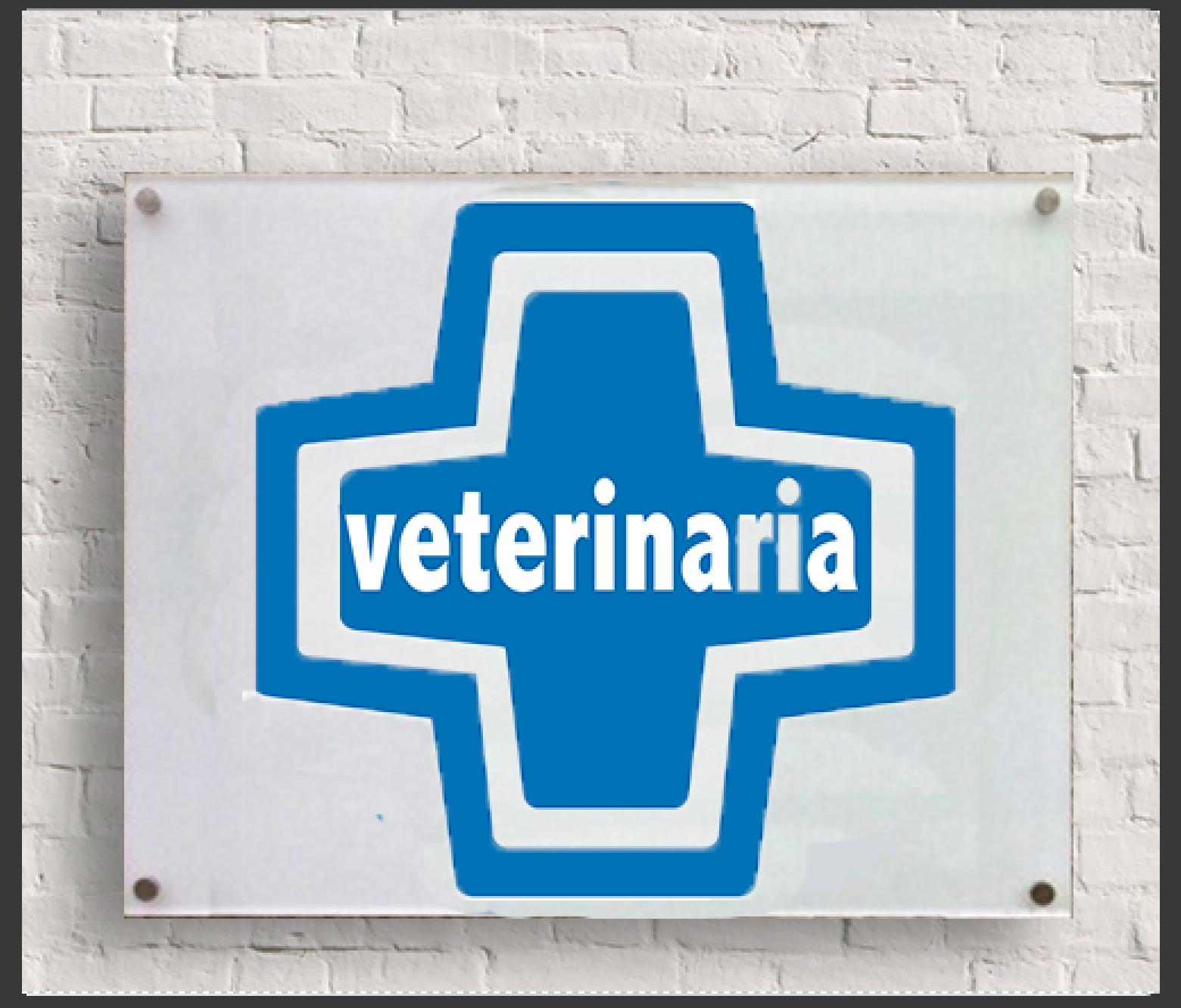 Placas metacrilato cruz azul veterinaria - Diseno de clinicas veterinarias ...